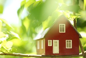 Environmental friendly home