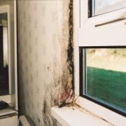 Homes Act Mould