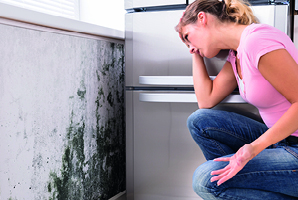 planned-maintenance avoid mould