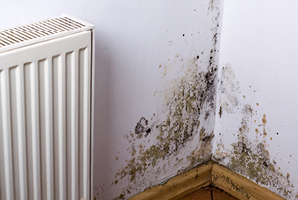 How can I get rid of condensation and mould